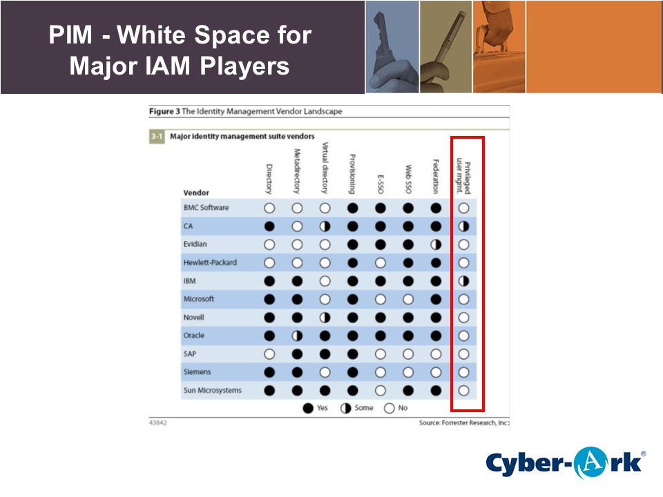 PIM - White Space for Major IAM Players