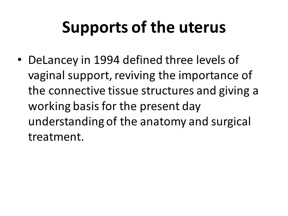 Supports of the uterus