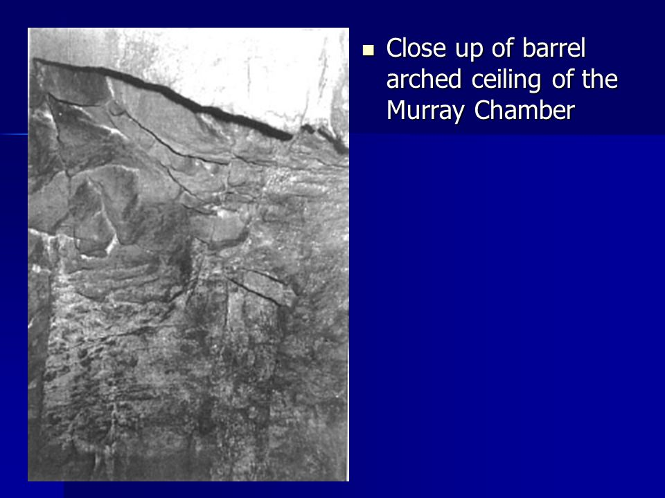 Close up of barrel arched ceiling of the Murray Chamber