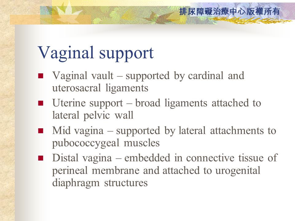Vaginal support Vaginal vault – supported by cardinal and uterosacral ligaments. Uterine support – broad ligaments attached to lateral pelvic wall.