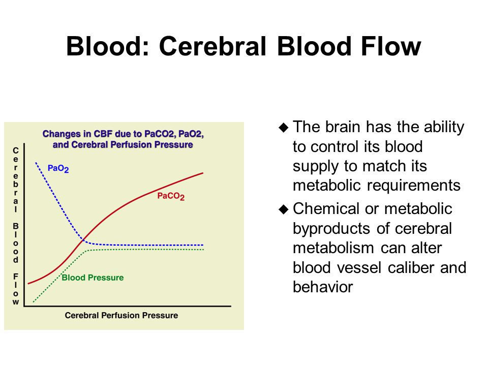 Blood: Cerebral Blood Flow