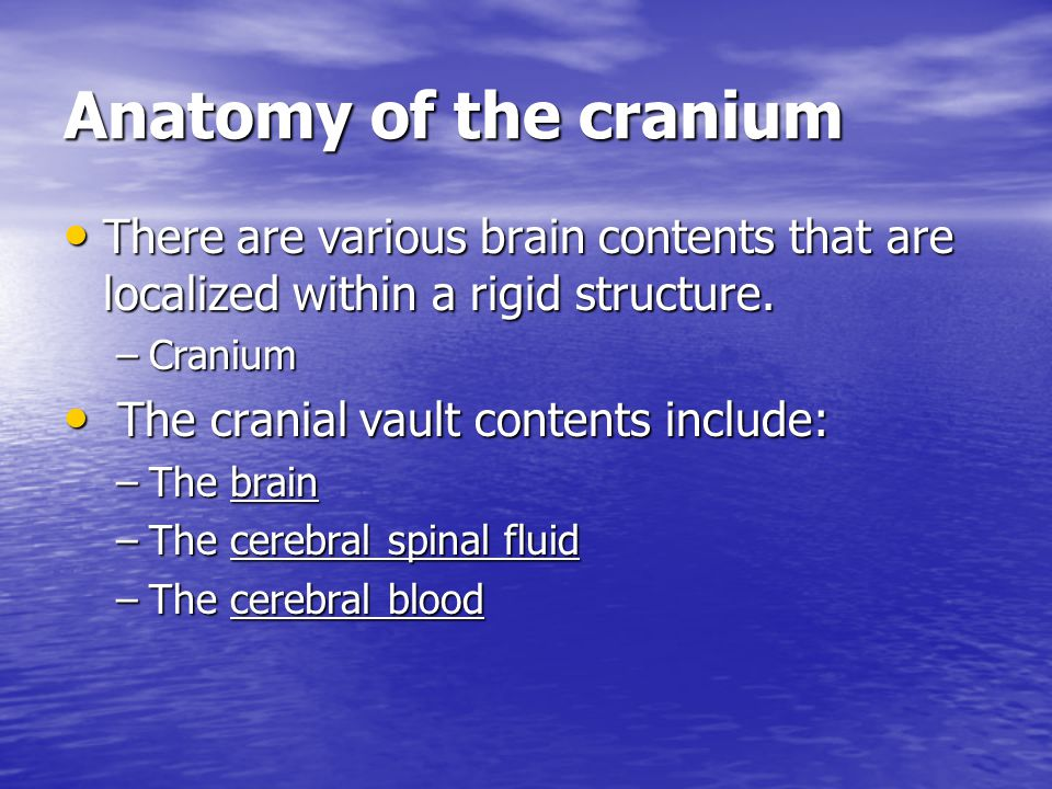 Anatomy of the cranium There are various brain contents that are localized within a rigid structure.