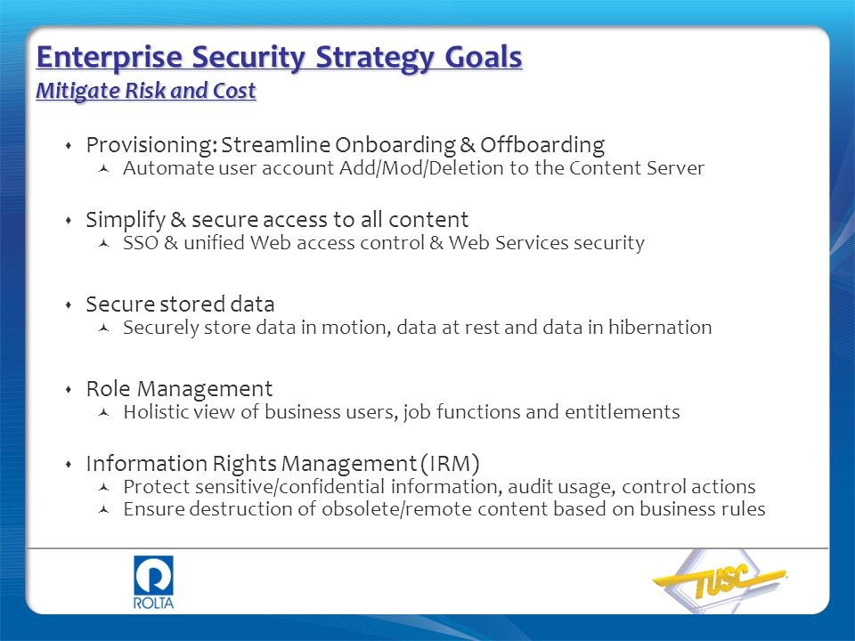 Enterprise Security Strategy Goals Mitigate Risk and Cost