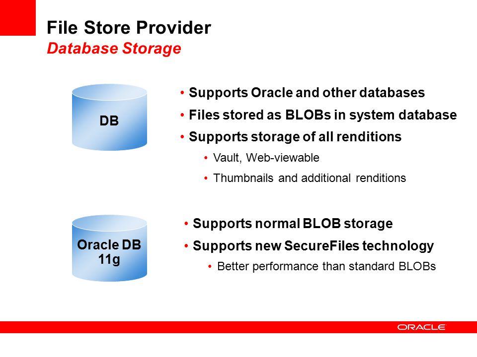 File Store Provider Database Storage