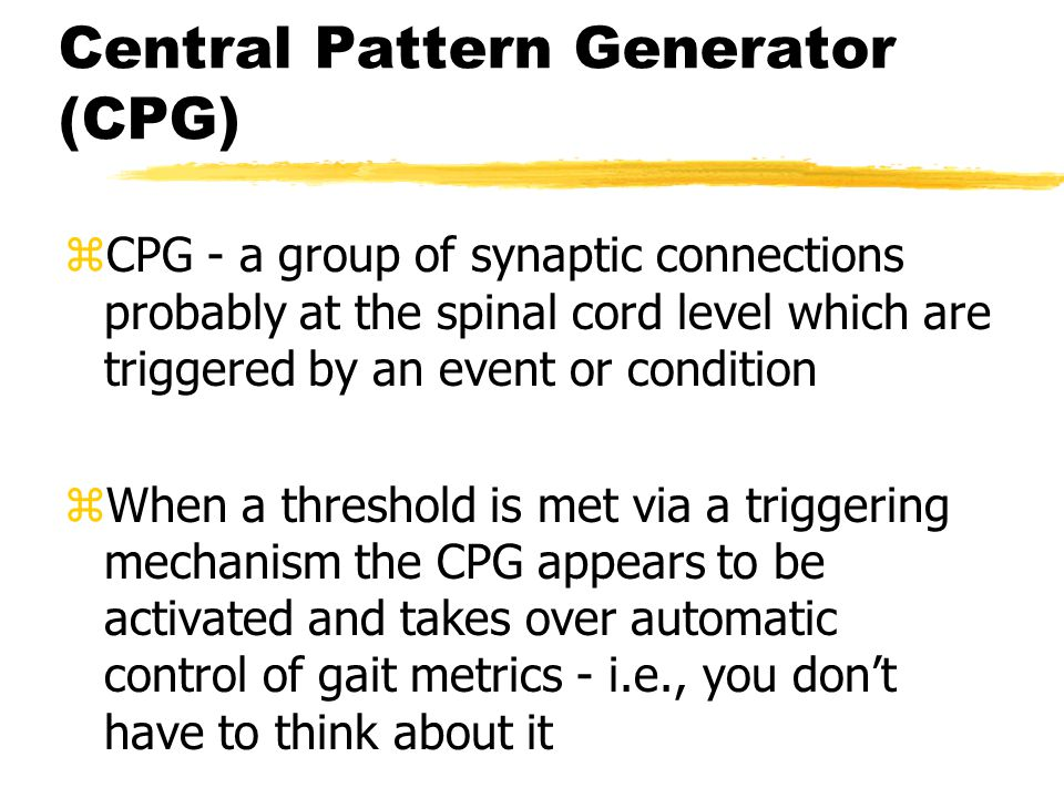 Central Pattern Generator (CPG)