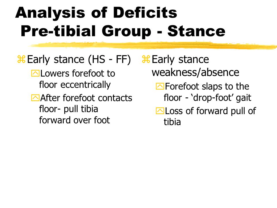 Analysis of Deficits Pre-tibial Group - Stance