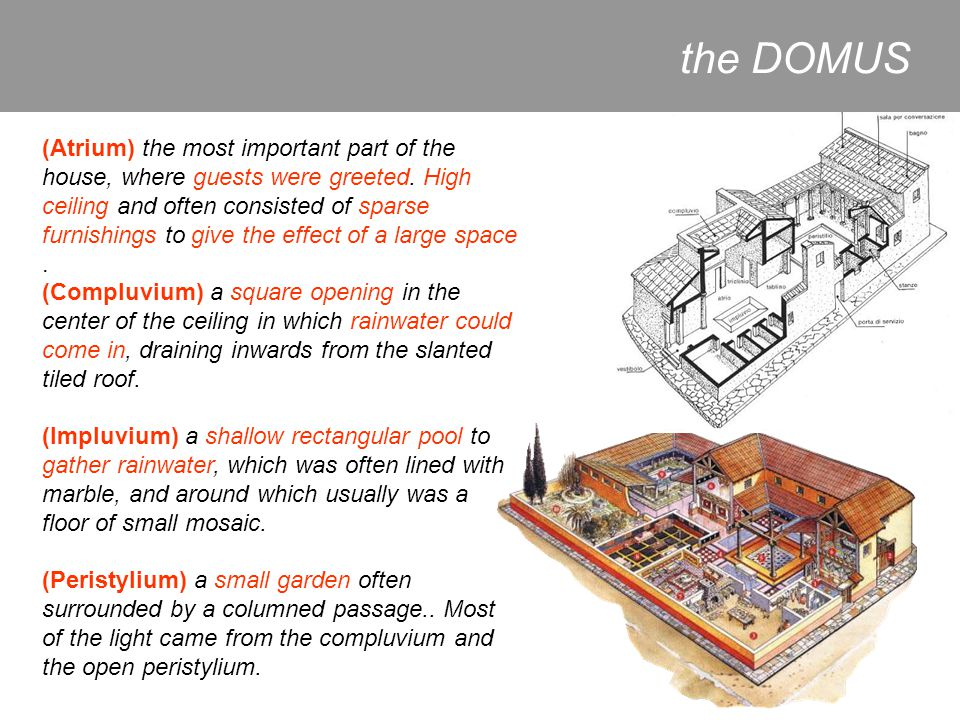 the DOMUS