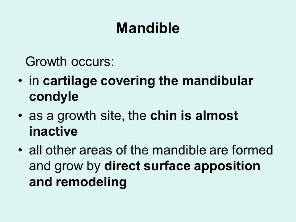 Mandible Growth occurs: in cartilage covering the mandibular condyle