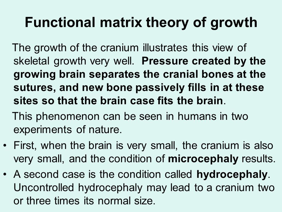 Functional matrix theory of growth