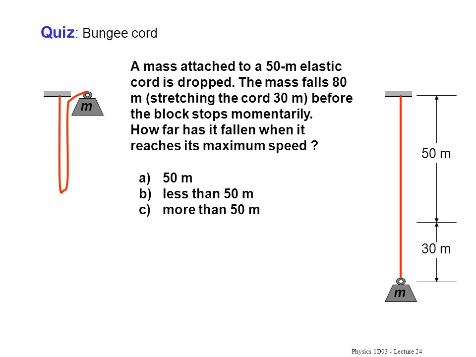 Quiz: Bungee cord