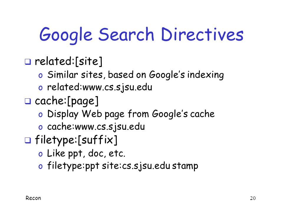 Google Search Directives