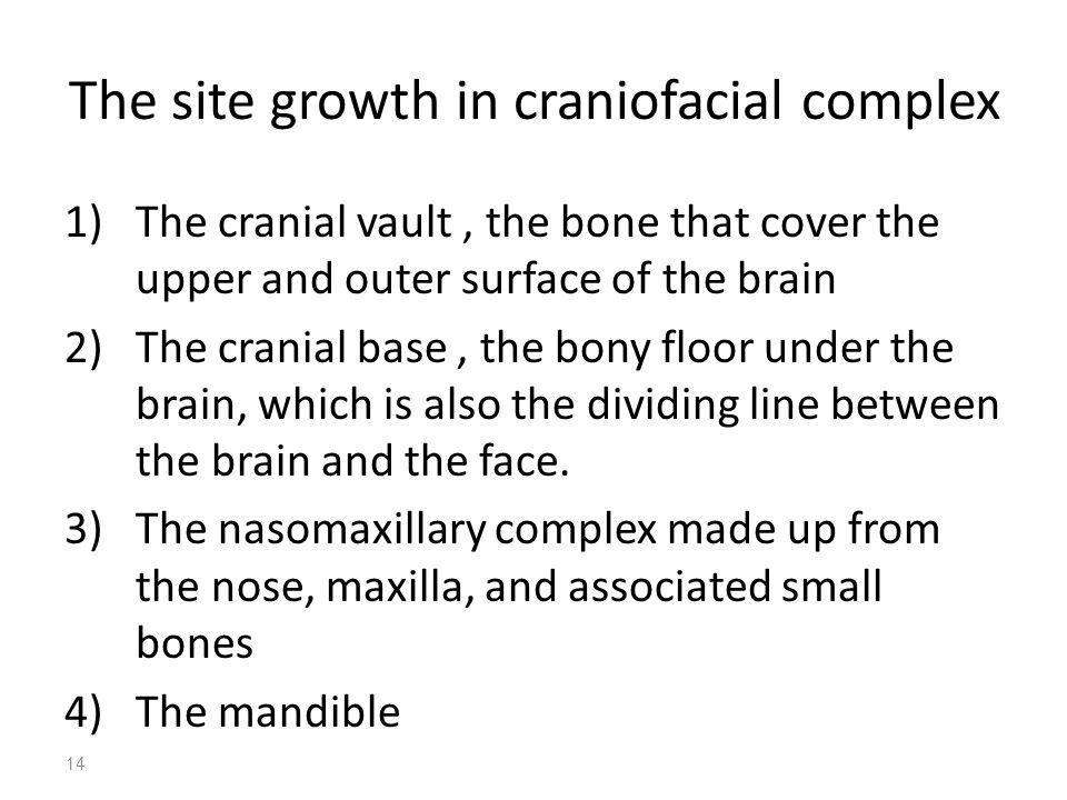 The site growth in craniofacial complex