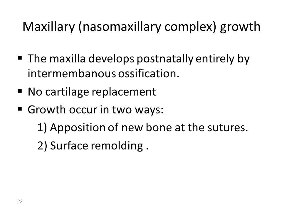 Maxillary (nasomaxillary complex) growth