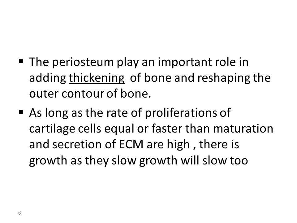 The periosteum play an important role in adding thickening of bone and reshaping the outer contour of bone.
