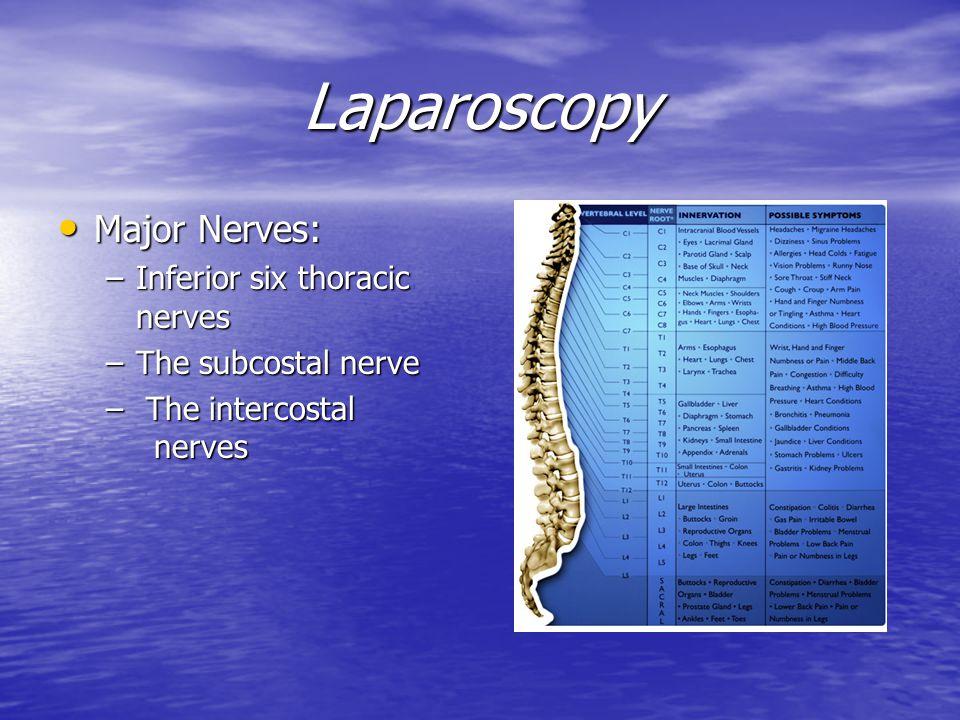 Laparoscopy Major Nerves: Inferior six thoracic nerves