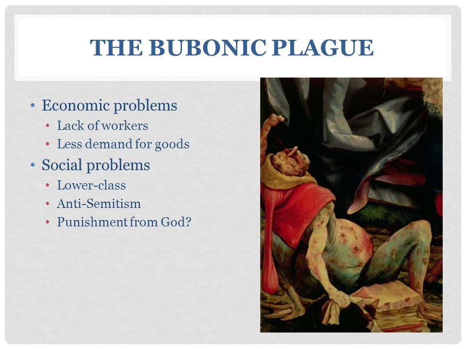 The Bubonic Plague Economic problems Social problems Lack of workers