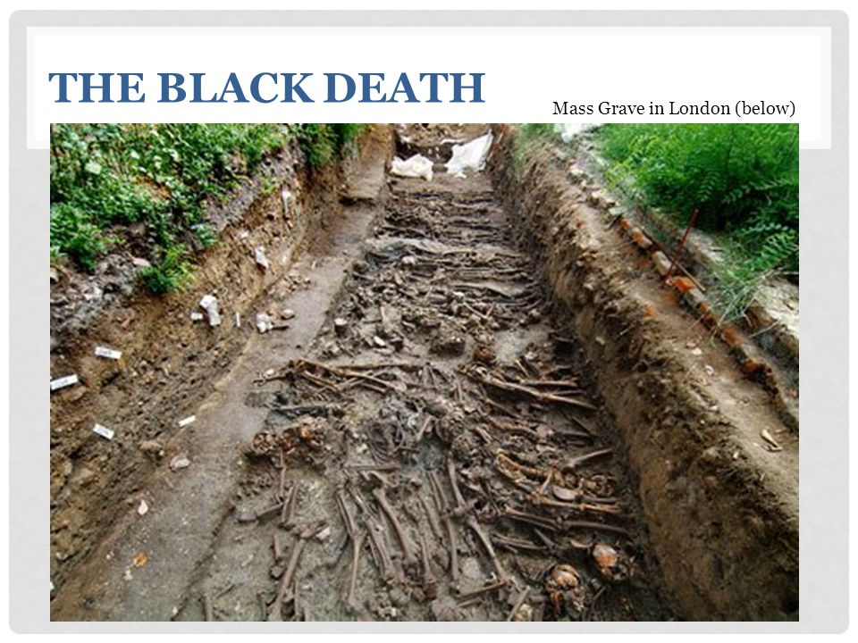 The Black Death Mass Grave in London (below)