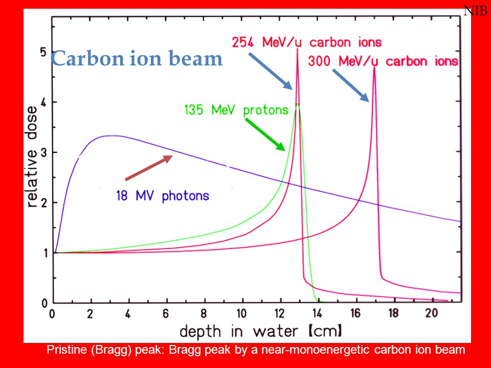 Depth doses of photons, protons, and carbon ions