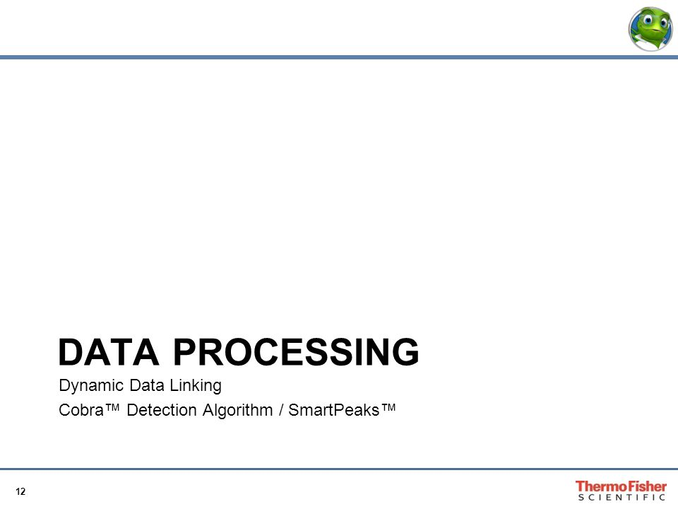Data Processing Dynamic Data Linking