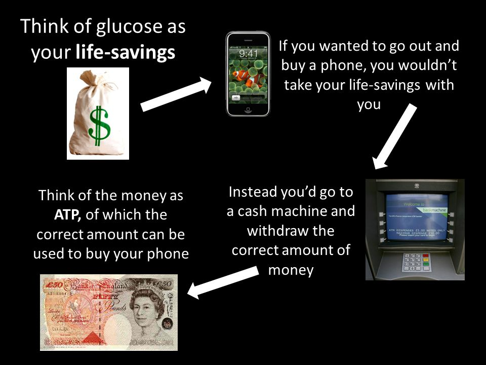 Think of glucose as your life-savings