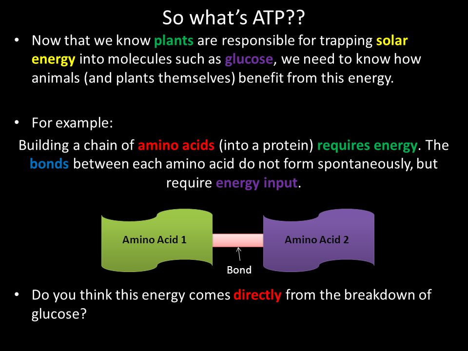 So what's ATP