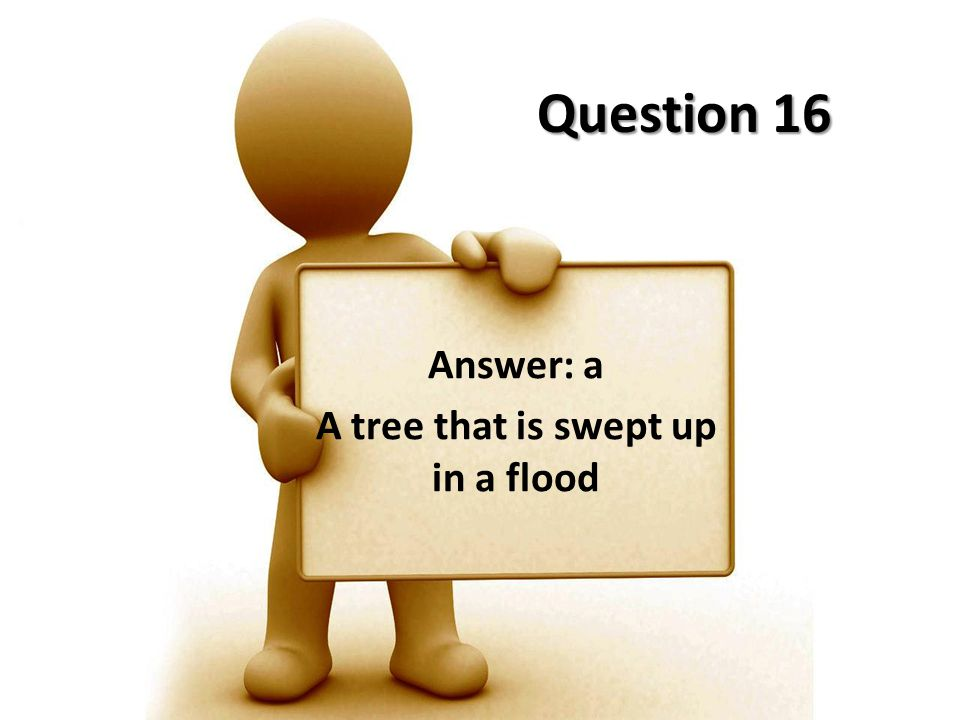 Answer: a A tree that is swept up in a flood
