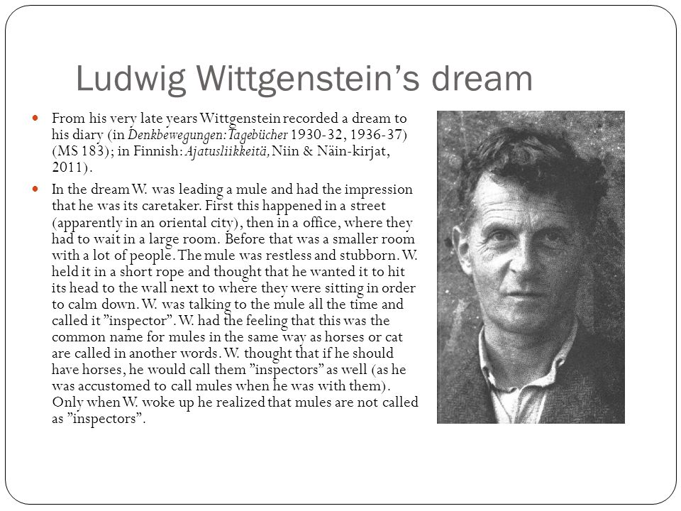 Ludwig Wittgenstein's dream