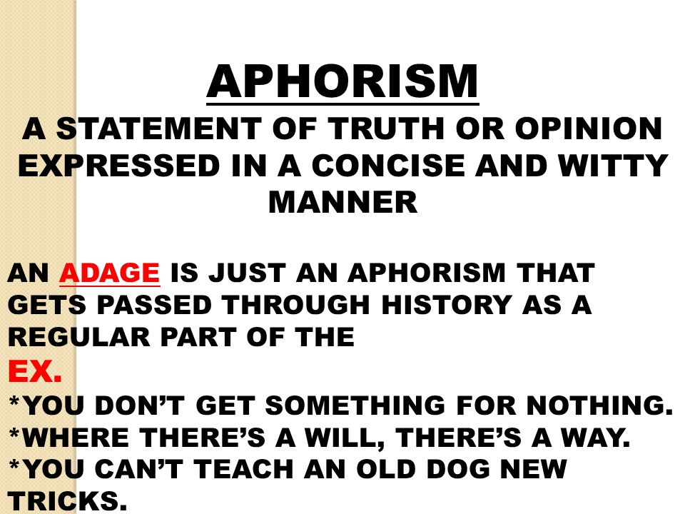 APHORISM A STATEMENT OF TRUTH OR OPINION EXPRESSED IN A CONCISE AND WITTY MANNER.