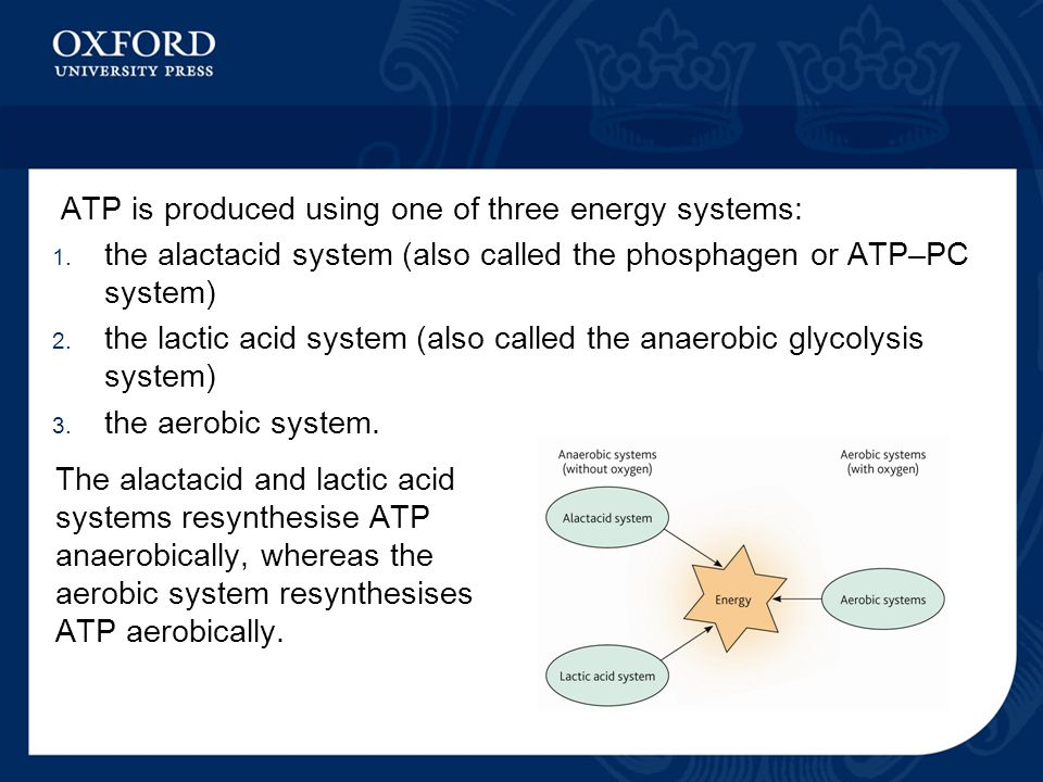 ATP is produced using one of three energy systems: