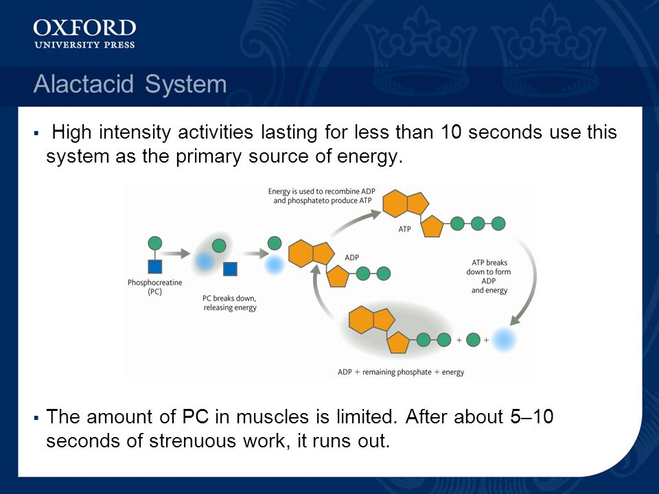Alactacid System High intensity activities lasting for less than 10 seconds use this system as the primary source of energy.