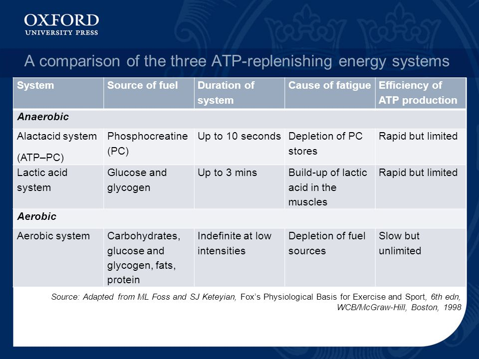 A comparison of the three ATP-replenishing energy systems