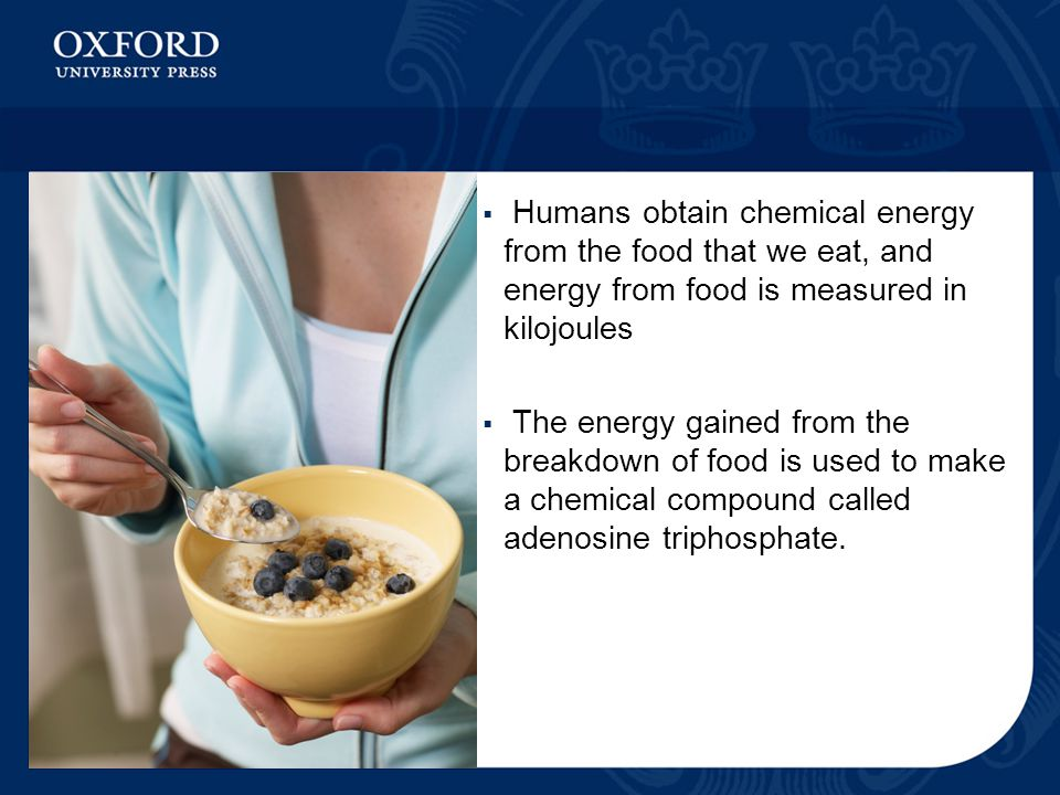 Humans obtain chemical energy from the food that we eat, and energy from food is measured in kilojoules