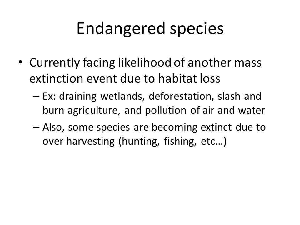 Endangered species Currently facing likelihood of another mass extinction event due to habitat loss.