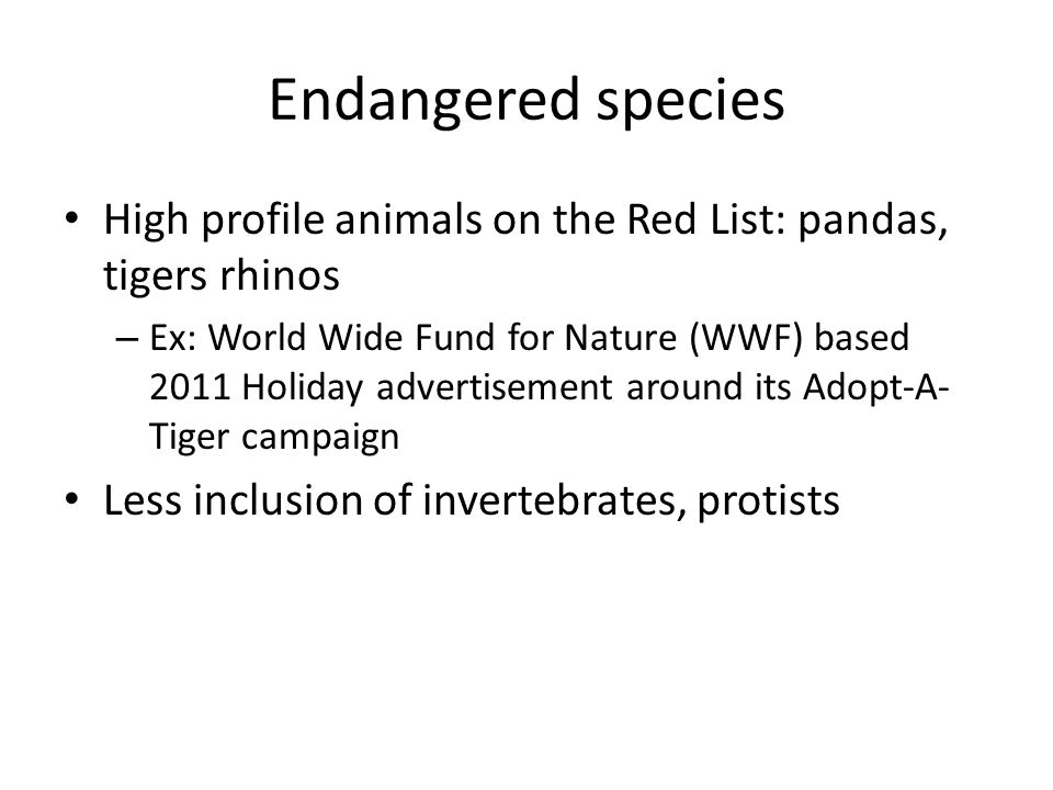 Endangered species High profile animals on the Red List: pandas, tigers rhinos.