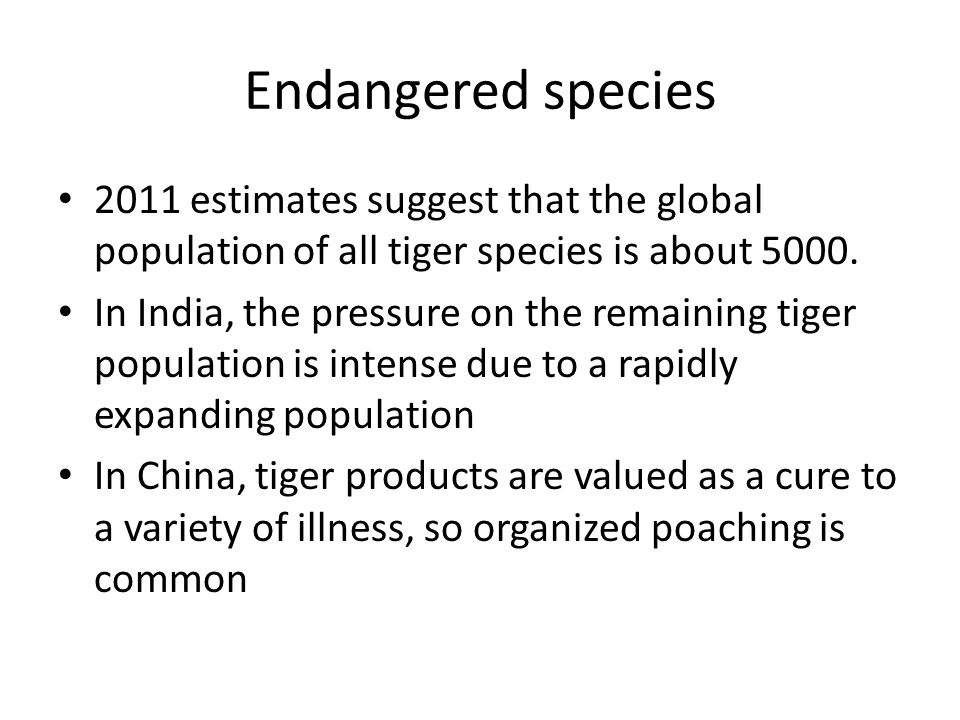 Endangered species 2011 estimates suggest that the global population of all tiger species is about 5000.