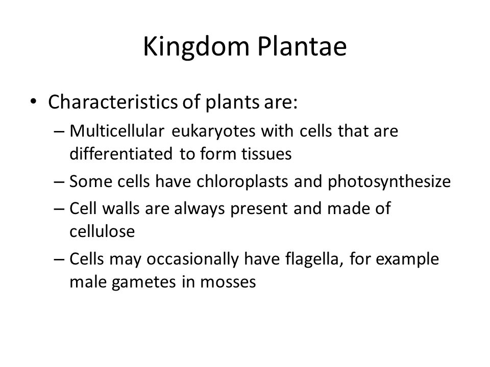 Kingdom Plantae Characteristics of plants are: