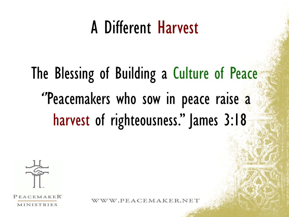 The Blessing of Building a Culture of Peace