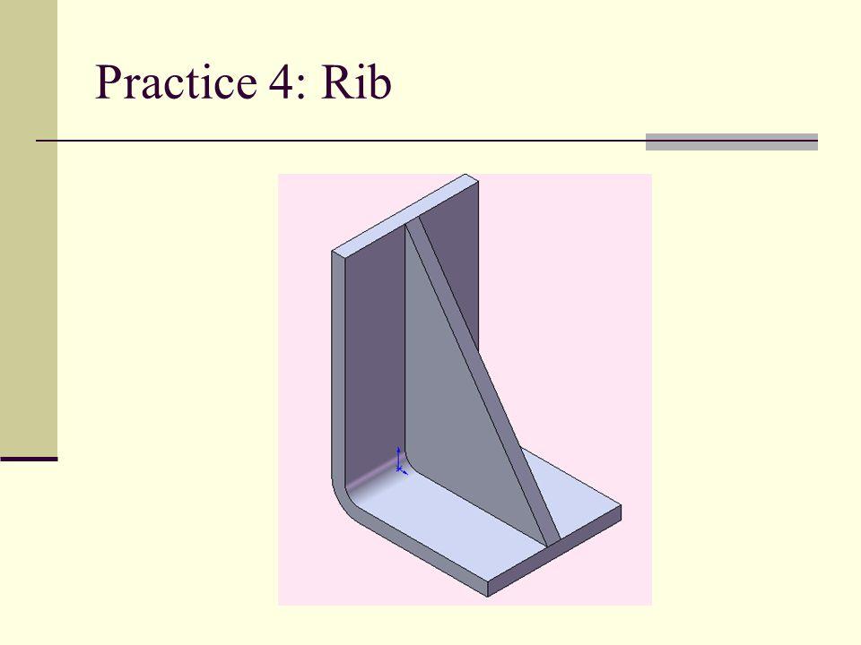 Practice 4: Rib