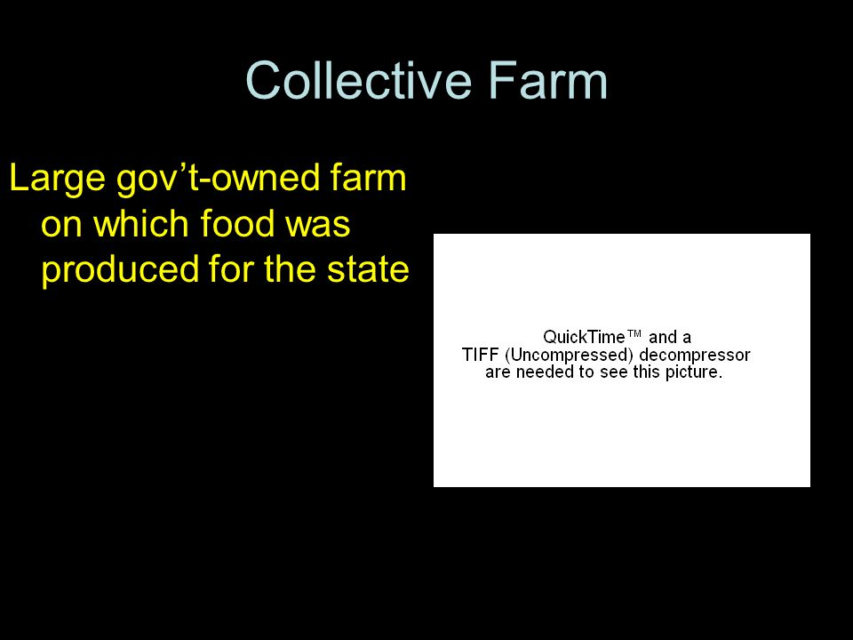 Collective Farm Large gov't-owned farm on which food was produced for the state