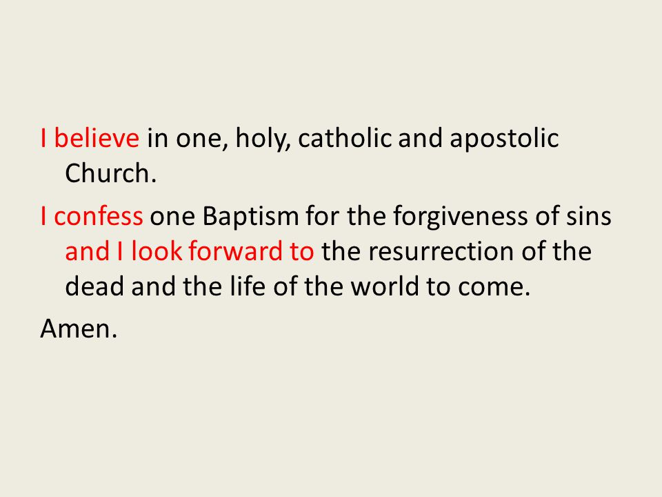 I believe in one, holy, catholic and apostolic Church