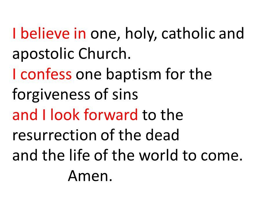 I believe in one, holy, catholic and. apostolic Church