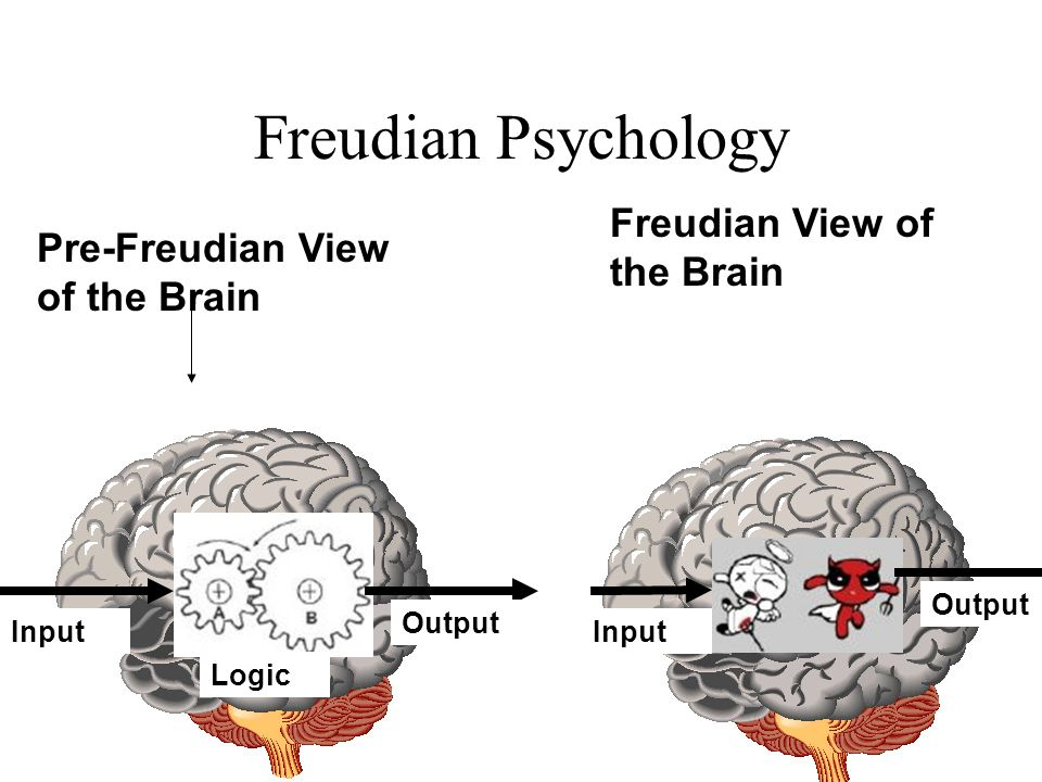 Freudian Psychology Freudian View of the Brain
