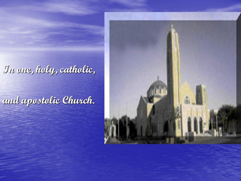 In one, holy, catholic, and apostolic Church.