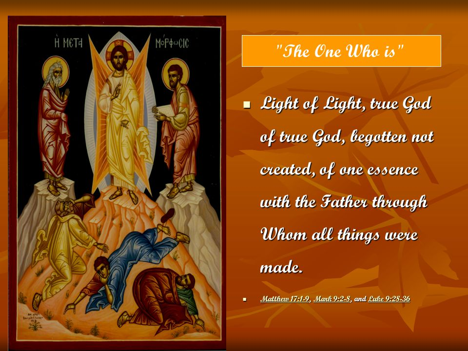 The One Who is Light of Light, true God of true God, begotten not created, of one essence with the Father through Whom all things were made.