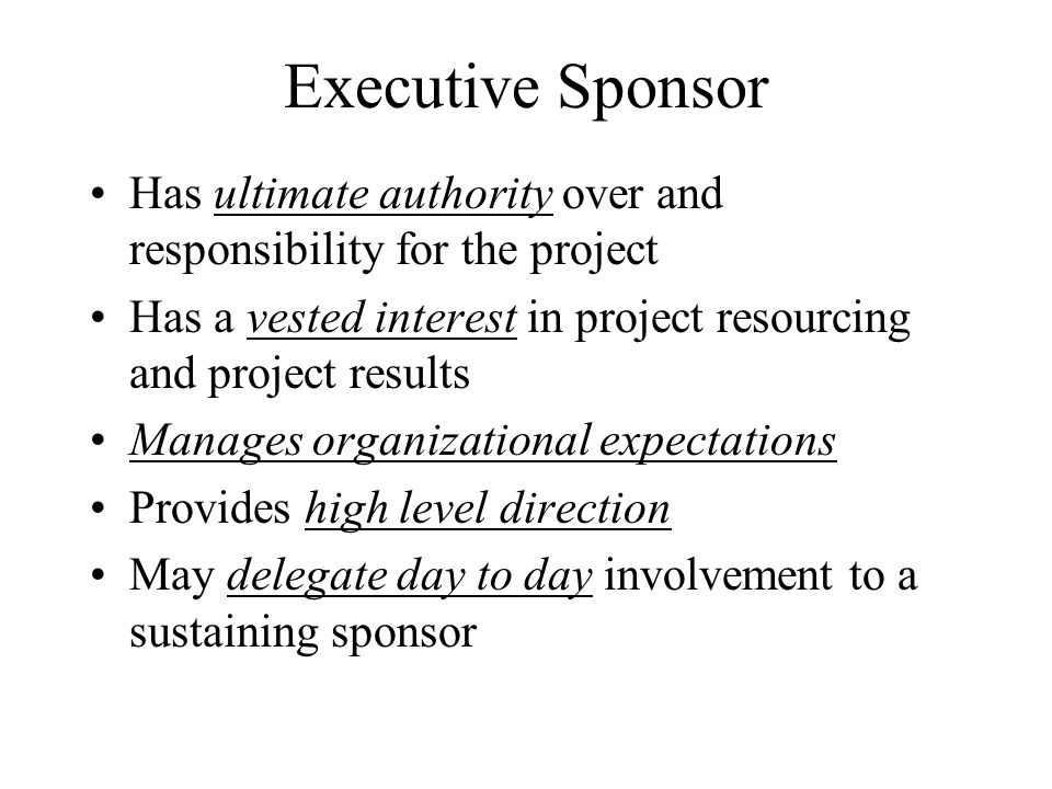 Executive Sponsor Has ultimate authority over and responsibility for the project. Has a vested interest in project resourcing and project results.