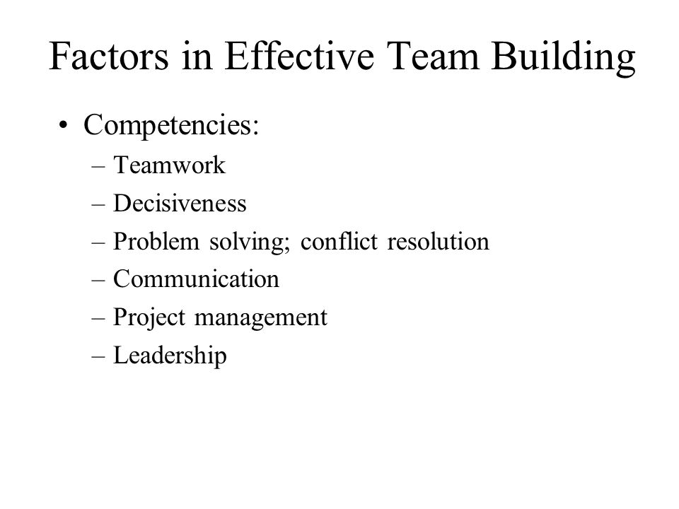 Factors in Effective Team Building