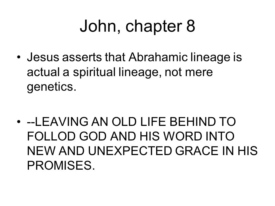 John, chapter 8 Jesus asserts that Abrahamic lineage is actual a spiritual lineage, not mere genetics.