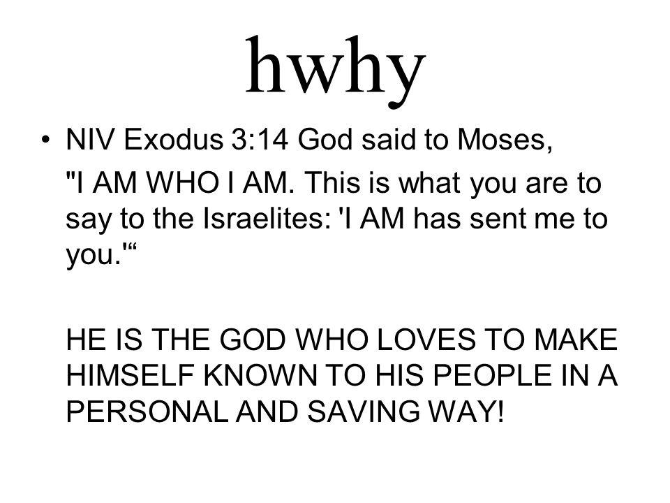 hwhy NIV Exodus 3:14 God said to Moses,