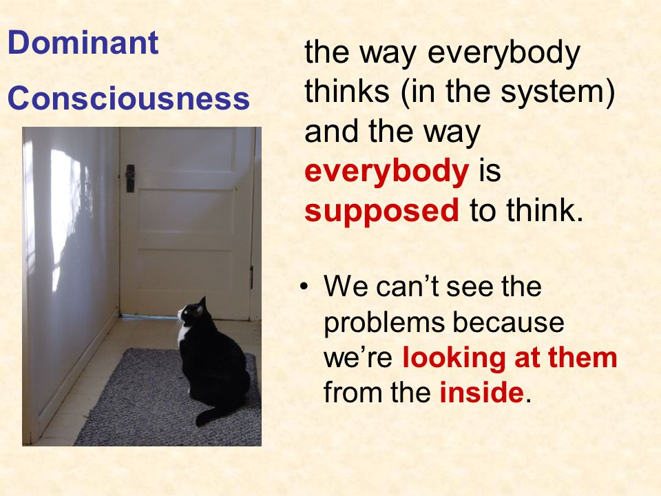 Dominant Consciousness. the way everybody thinks (in the system) and the way everybody is supposed to think.