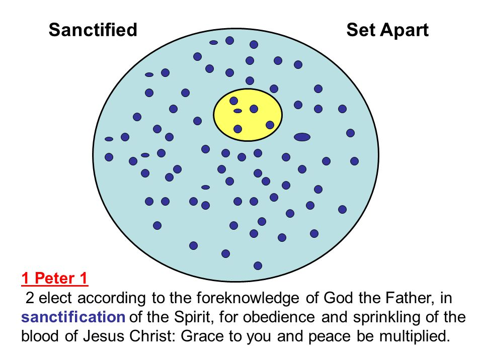 Sanctified Set Apart 1 Peter 1